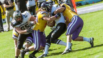 Vikings Panthers