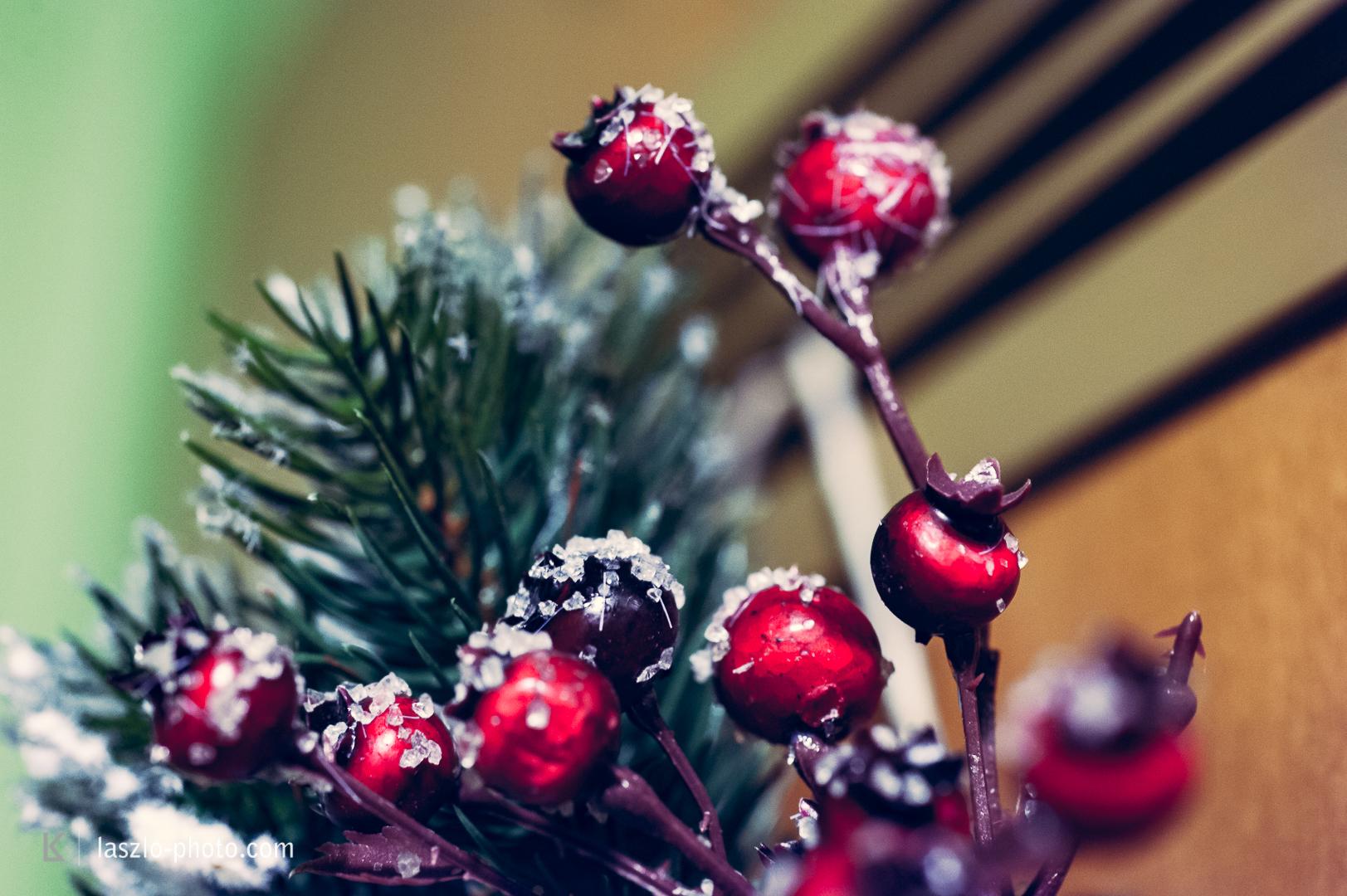 20161224_Weihnachten_Christbaum-4731