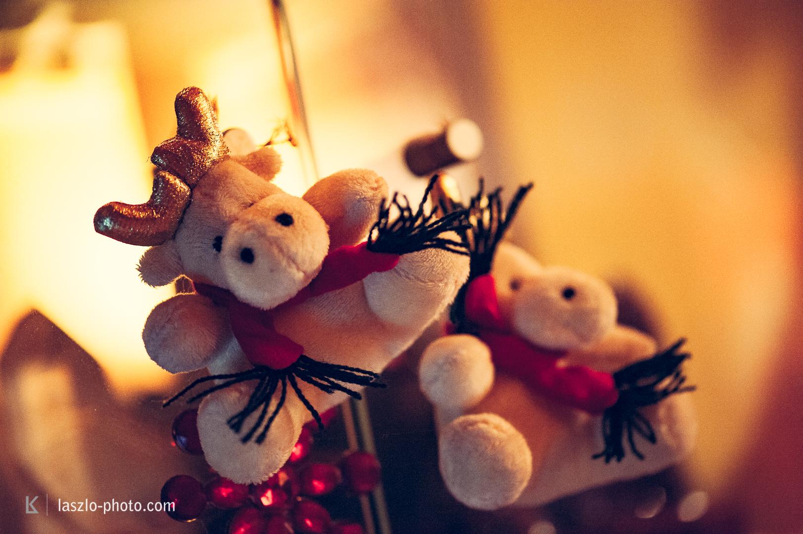 20161224_Weihnachten_Christbaum-4892