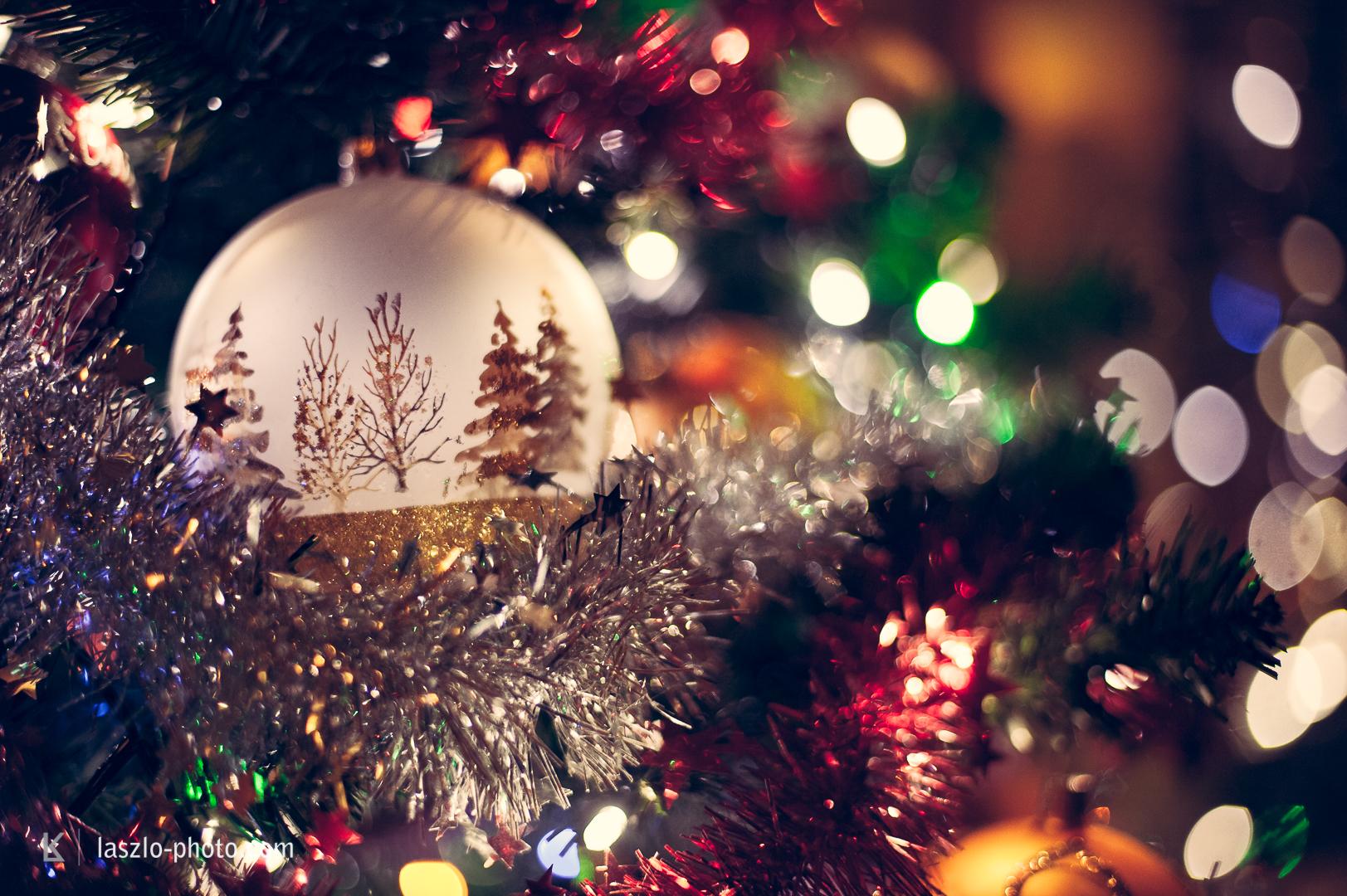 20161224_Weihnachten_Christbaum-4932